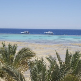 "Ägypten - Soma Bay (Pressereise) • <a style=""font-size:0.8em;"" href=""http://www.flickr.com/photos/80202694@N02/14277516158/"" target=""_blank"">View on Flickr</a>"