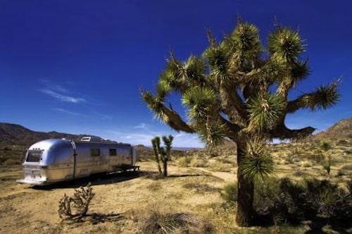 Amerika ist Vielfalt - hier eine Landschaft bei Palm Springs. Foto: djd/CEWE