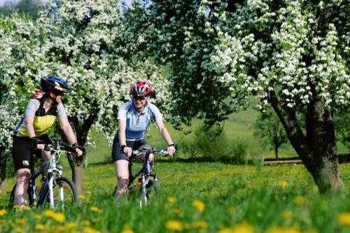 Von der Blütenwanderung bis zur Oldtimer-Rallye reicht das Ferien-Programm im Mostviertel. Foto: djd/Mostviertel Tourismus/www.photographer.at