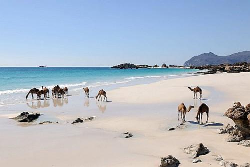 Oman bietet beides: Sichere Strandferien und Orient-Feeling. Foto: djd/Sultanate of Oman