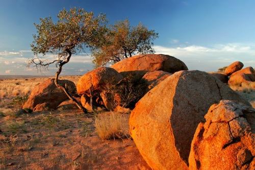 Das orangefarbene Leuchten des Gesteins in der Kalahari Wüste ist nur einer von vielen spektakulären Eindrücken, die man auf einer Südafrika-Reise sammelt. (Foto: epr/DeLaRe Reisen)
