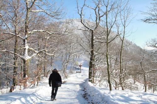 Die wunderschöne Schneelandschaft Bad Harzburgs bei einer Winterwanderung genießen. Foto: djd/Bad Harzburg