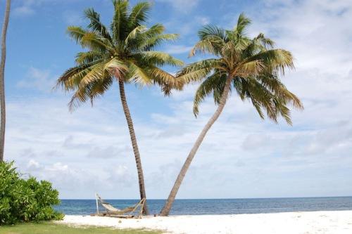 Die Seychellen und Mosambik sind traumhafte Urlaubsziele für Winterflüchtlinge. Foto: djd/Abendsonne Afrika