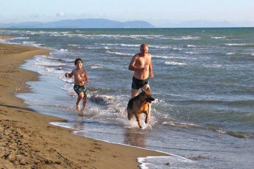 Am Strand buddeln und im Meer baden gehört zu den schönsten Aktivitäten vierbeiniger Urlauber. Foto: djd/toscana-forum.de/Elvira Pajarola