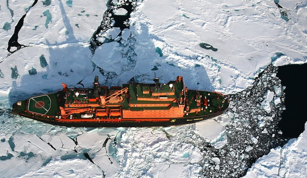 """Quelle: """"obs/Poseidon Expeditions/Foto Poseidon Expeditions""""."""