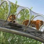 Foto: Philadelphia Zoo