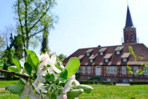 Zum reizvollen Klosterpark Harsefeld gehört die dreischiffig gewölbte St. Marien- und Bartholomäikirche aus dem 15. Jahrhundert. Foto: djd/Tourismusverband Landkreis Stade/Martin Elsen