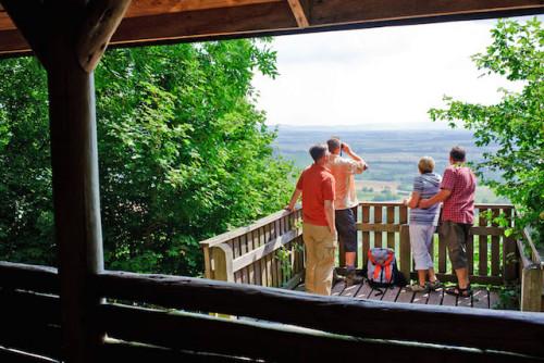 In Schweinfurt treffen das fränkische Weinland, der Steigerwald und die Haßberge aufeinander. Foto: djd/TV Franken/A. Hub/Tourist-Information Schweinfurt360°