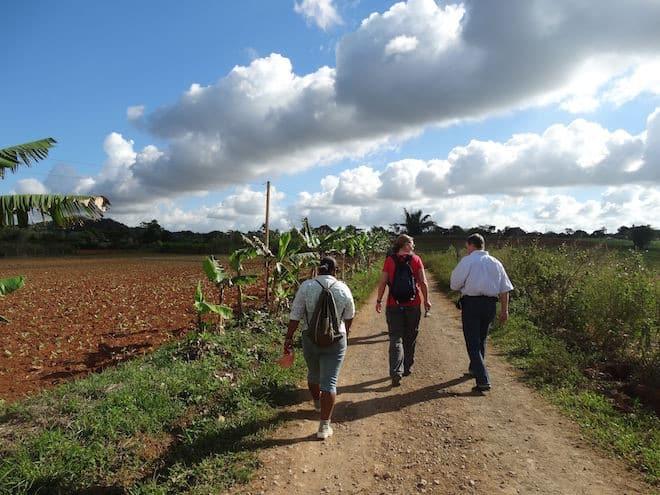 Kuba: Wanderer unterwegs im Viñales-Tal Foto: Wikinger Reisen