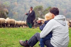 Besser als Fernsehgucken: Tiere in freier Natur zu beobachten, macht nicht nur Spaß, sondern ist auch sehr lehrreich. (Foto: epr/Landratsamt Heidenheim/Heiko Grandel)