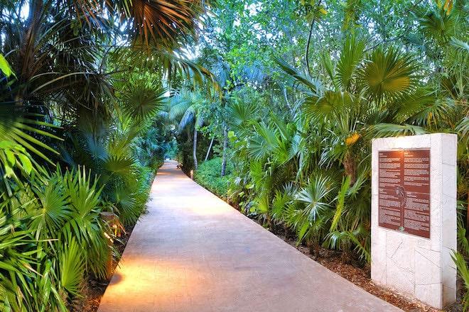 Die Umweltschutzorganisation engagiert sich seit 14 Jahren im Tourismus, damit grünes Reisen möglich wird. Foto: djd/Rainforest Allianc