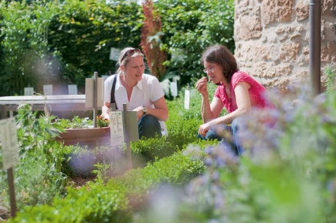 Zahlreiche Schaugärten, wie dieser duftende Kräutergarten, laden zum verweilen ein und erlauben auch mal eine kleine Kostprobe. (Foto: epr/Touristikgemeinschaft Hohenlohe/Landesgartenschau Öhringen 2016)