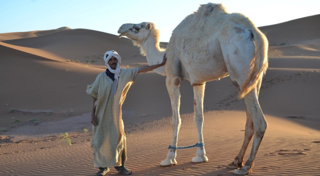 """The best you can do is to walk with a camel and smile."" (Nomadische Weisheit) Foto: Marokko To Go"