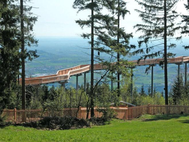 """Weitblick inklusive: Der """"WaldWipfelWeg"""" ist nur eines von vielen spannenden Naturerlebnissen im Bayerischen Wald. Foto: djd/Urlaubsregion St. Englmar"""