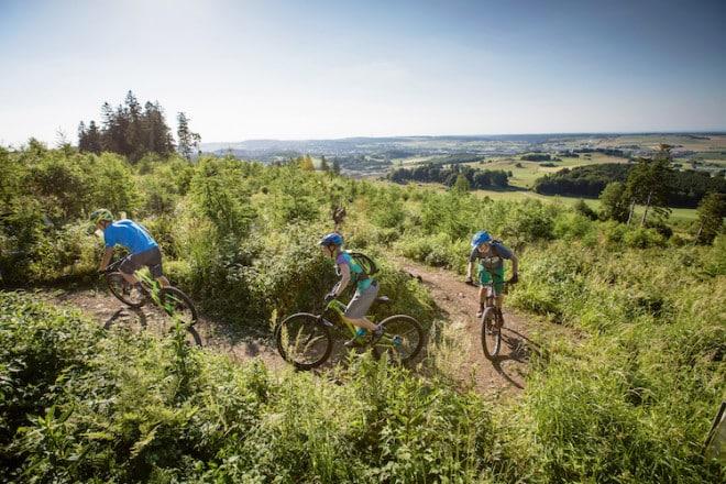 Im Sauerland kommt keine Langweile auf. Wer die Wanderschuhe mal einen Tag stehen lassen möchte, sattelt auf ein Mountainbike um – und ab geht die Post über moderate Anstiege und flüssige Abfahrten. (Foto: epr/Brilon Wirtschaft und Tourismus GmbH)