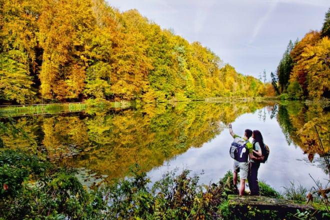 Nordamerika? Nein, Mitteleuropa! Im deutsch-französischen Grenzgebiet Pfälzerwald-Nordvogesen können Wanderfreunde im Herbst ein beeindruckendes Naturschauspiel bestaunen – Indian Summer in heimischen Gefilden. (Foto: epr/WANDERarena Pfälzerwald-Nordvogesen)