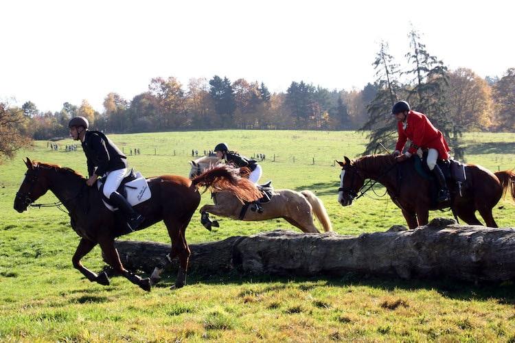 Hoch zu Ross und durch Feld und Flur geht es bei der traditionellen Jagd durch das Weserbergland. Foto: djd/Touristik-Information Hochsolling