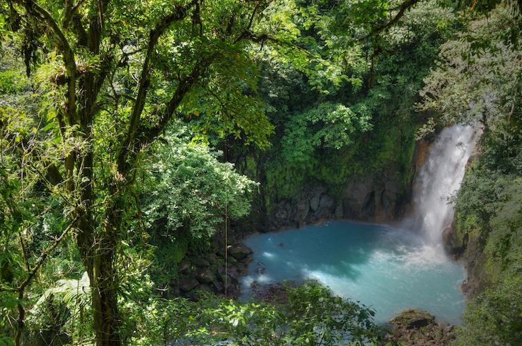 Der himmelblaue Fluss Rio Celeste Costa Rica Foto:   Wikinger Reisen