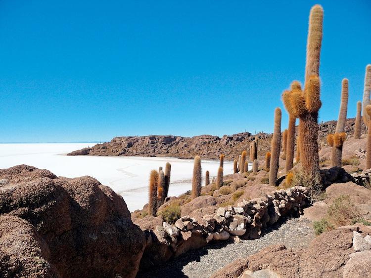Die Salzpfanne Salar de Uyuni in Bolivien Foto: Wikinger Reisen