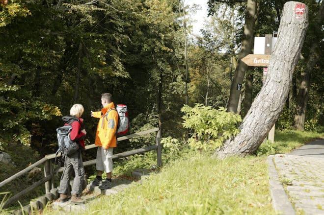 Foto: Winterberg Touristik und Wirtschaft