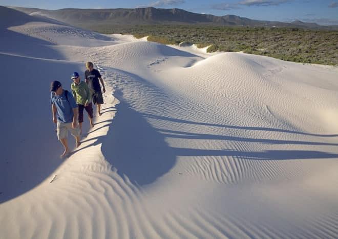 Dünenwanderung im Naturreservat Grootbos Bild: Wikinger Reisen