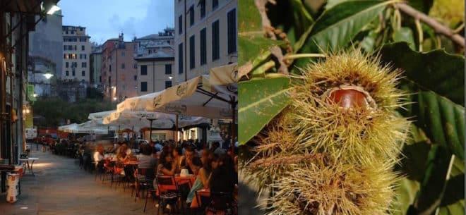 """Foto: Links: Piazza delle Erbe in Genua – hier erfreuen sich die Biere der Mikrobrauereien großer Beliebtheit Rechts: Die Kastanie ist eine wichtige Zutat des """"Castagnasca""""  Foto Credit: Photo Archive Agenzia """"In Liguria"""""""