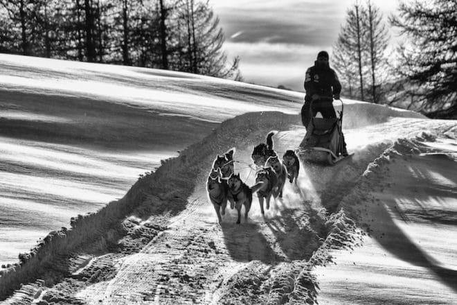 Foto: © Luca Chiarelli