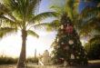 Weihnachten mit Christbaum unter Palmen Foto: ©The Beaches of Fort Myers & Sanibel