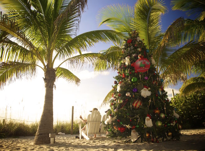 Weihnachten mit Christbaum unter Palmen Foto: ©The Beaches of Fort Myers & Sanibel