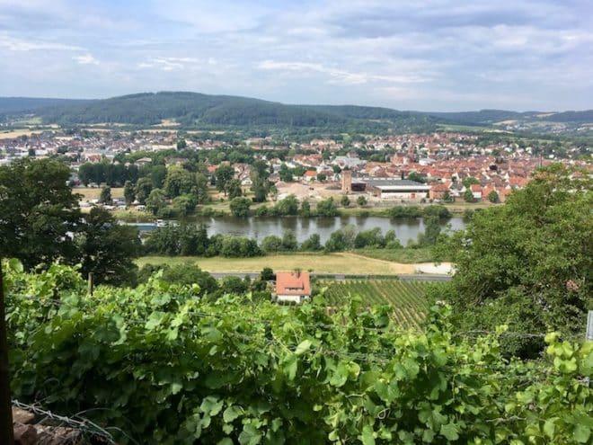 Der fränkische Rotwein Wanderweg führt durch die Weinterrassen oberhalb des Mains entlang.