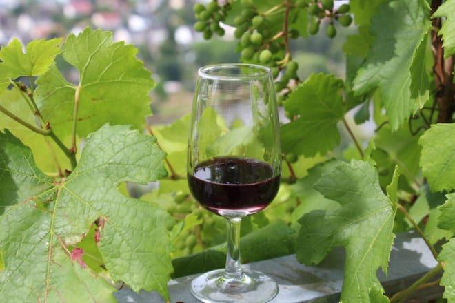 Ein ausgezeichneter roter Portwein vom Weingut Hillerich. Kräftig im Geschmack.