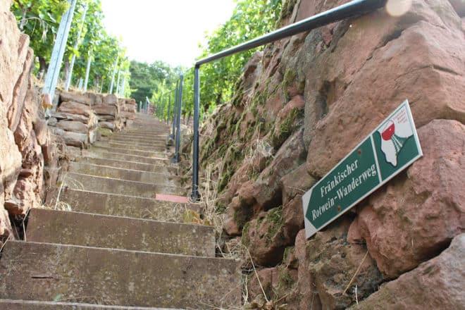 Auf dem fränkischen Rotwein Wanderweg geht es steil nach oben.