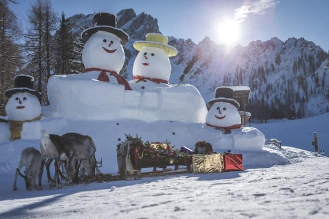 Im Skigebiet 3 Zinnen stehen die fünf einzigen freilebenden Rentiere in den Alpen gerne für ein Foto zur Verfügung.