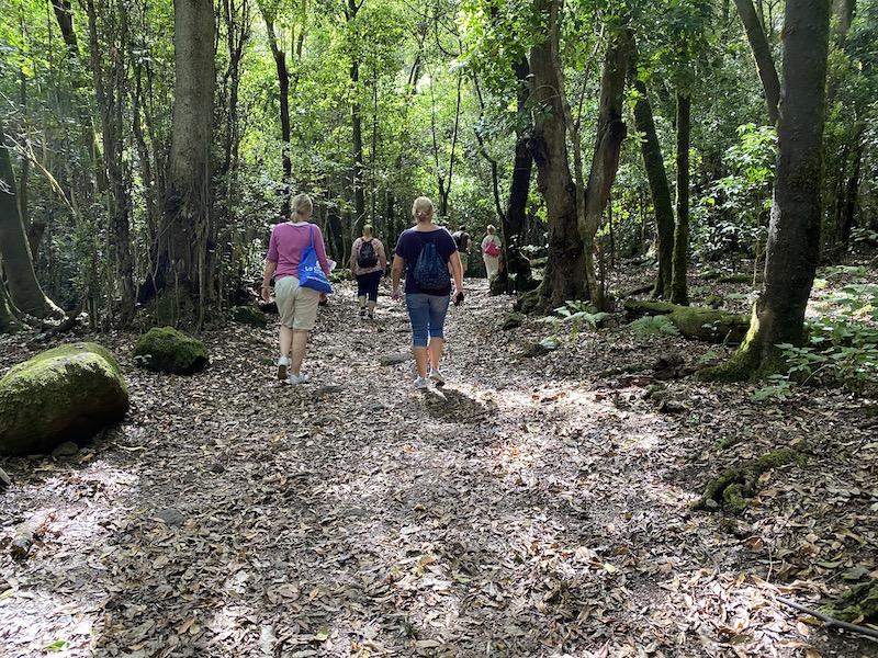 über 600 km Wanderwege gibt es im Nationalpark auf La Gomera