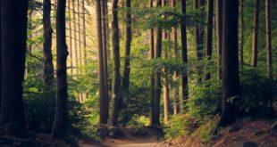 2021-05-20-Natururlaub