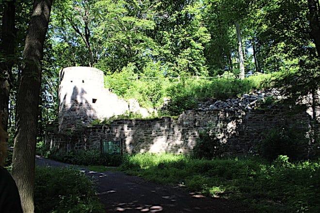 2021-06-28-Steigerwald